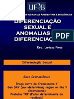 1-Aula Diferenciao Sexual