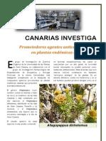 canarias investiga (Q. orgánica)