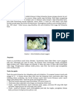mola-hidatidosa.pdf
