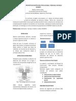 Resumen_Estimacion_de_recursos[1]