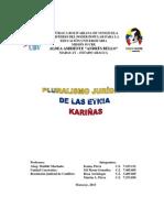 TRABAJO DE LOS KARIÑAS