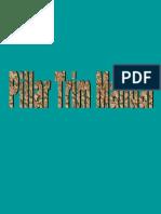 1.Pillar_Trim.pdf
