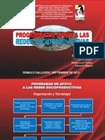 Programas de Apoyo a Redes Socioproductivas (Marian Soto)