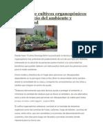 Técnica de cultivos organopónicos en beneficio del ambiente y comunidad