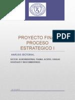 Proyecto Final Proceso Estrategico i