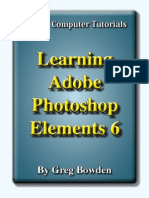 Learning Adobe Photoshop Elements 6