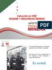 Induccion Basica Hse Consorcio Bvtc