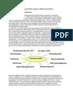 Folyamatmenedzsment.pdf