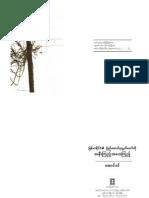 Aung Din - Burmese Regime's Parliament - Perspective