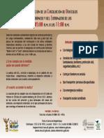 limitacion.pdf