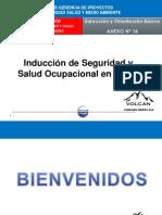 INDUCCION VOLCAN - 1° DIA ok