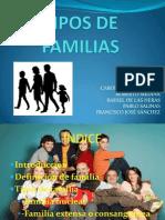 tiposdefamilias-110307144416-phpapp01
