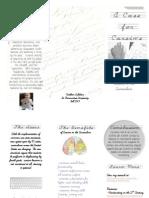educ 505 - cursive brochure