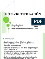 fitorremediacion-121210092524-phpapp02