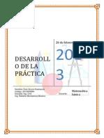 DESARROLLO DE LA PRÁCTICA
