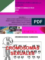 Genetica Expo