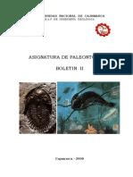 Boletin II de Paleontologiaxx