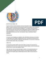 Hepatitis Viral Cronica
