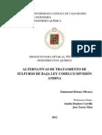 ALTERNATIVAS DE TRATAMIENTO DE SULFUROS DE BAJA LEY CODELCO DIVISIÓN ANDINA