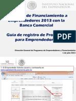 Guia_registro_de_proyectos_Programa_Banca_2013.pdf