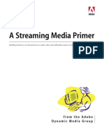 A Streaming Media Primer