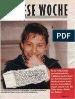 Stern 1993