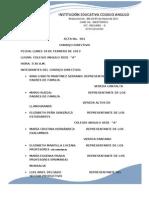 Acta 2013 Consejo Directivo - Copia