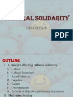 Cultural Solidarity - Peace Report