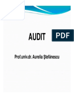 audit 2.pdf
