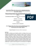 GESTÃO DE AGRONEGOCIO