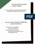Curs Biocel 16.10.2013.pdf