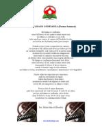 MI KATANA ES CONFIANZA (Poema Samurai)