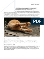 ComFusion.pdf