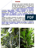 Angiospermas 2.pdf