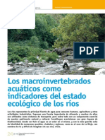 Dialnet-LosMacroinvertebradosAcuaticosComoIndicadoresDelEs-4015812
