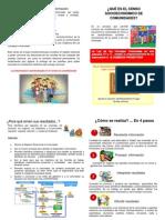 Diptico Consejos Comunales MODELO