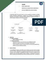 INFORME Estabilidad de Taludes Final de Todo Papito Campeon