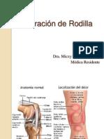 Exploración de Rodilla
