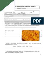 Ficha de Diagnostica