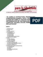 Composicion Del Cabello