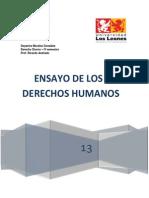 Ensayo de Los Derechos Humanos (Imprimir)