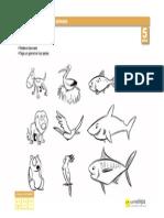 Animales Clasesanimales 5