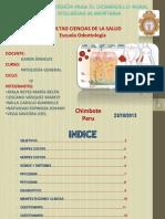 Grupo Odontogenesis Odontologia