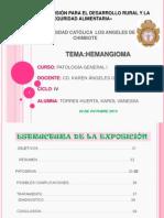 PATOLOGÍA GENERAL I - ENTREGA DE PRODUCTO II - HEMANGIOMA