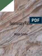 Sedimentary Facies09.pdf