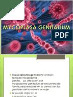 mycobacterium Genitalium.pptx