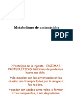 Metabolismo de aminoácidos 1