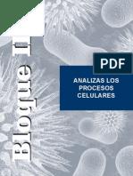 B2 Procesos celulares.pdf