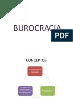 BUROCRACIA VERDADERA