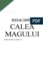 CALEA MAGULUI.doc